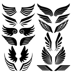 Wings set vector