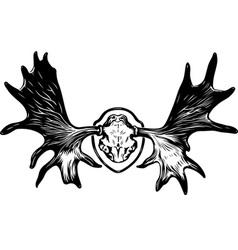 Horns of an elk vector image vector image