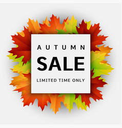 autumn sale concept background realistic style vector image