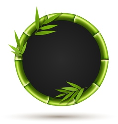 Bamboo circle frame with leafs isolated on white vector