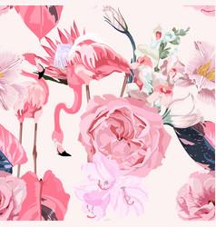 garden pink flowers tropical protea jungle plant vector image