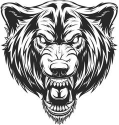 head ferocious wolf vector image