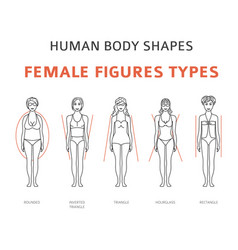 Human body shapes female figures types set simple vector