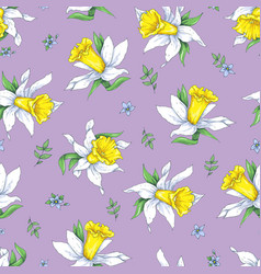 elegance seamless pattern with flowers narcissus vector image