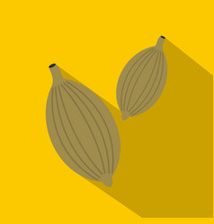 green cardamom pods icon flat style vector image