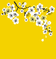 white sakura blossom on sunny yellow background vector image