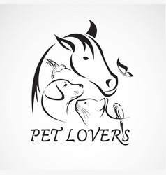 group of pets - horse dog cat bird butterfly vector image vector image