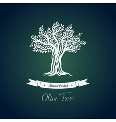 Leaf on branches of olive oil tree drawing vector image vector image