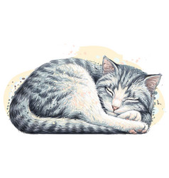 cat wall sticker vector image