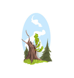 hand drawn landscape young branches growing from vector image
