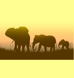 Horizontal of wild animals in sunset savanna vector