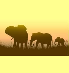 Horizontal wild animals in sunset savanna vector