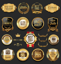 luxury retro badges gold and silver collection 2 vector image