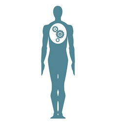 Male Body icon vector