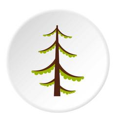 Spruce icon circle vector