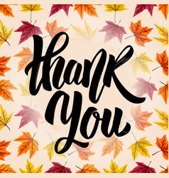 thank you hand drawn lettering on background vector image