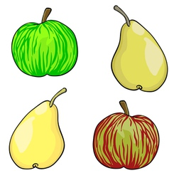 apple and pear fruit set of vector image vector image