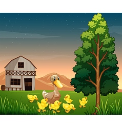 A duck and her ducklings across the barnhouse vector