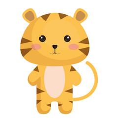 animal tiger vector image