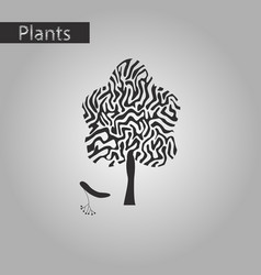 black and white style icon of linden wood vector image