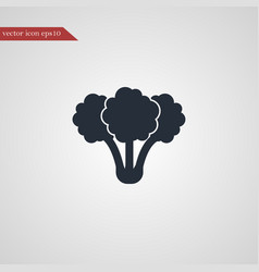 broccoli icon simple vegetable vector image