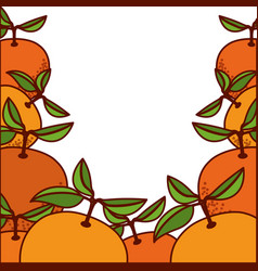 Colorful background of orange fruits vector