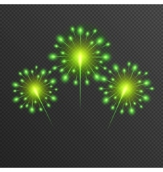 Shining green Firework glowing light vector image vector image