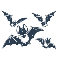 Silhouette of bats night vector