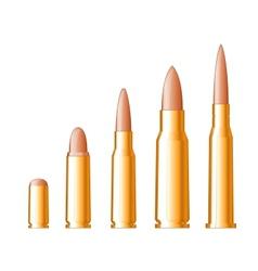 Set of gun bullets vector image