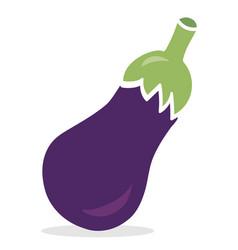 Eggplant vegetable vector