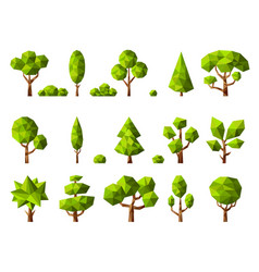 low poly plants geometrical cartoon stylized vector image