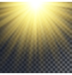 Sun rays effect vector image