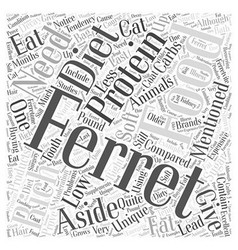 What Do Ferrets Eat Word Cloud Concept vector image