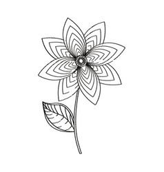 flower decoration garden sketch vector image