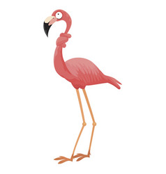 Cartoon pink flamingo funny flamingo with a neck vector