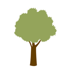 green tree season plant forest nature vector image