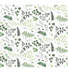 Seamless pattern of eucalyptus palm fern leaves vector