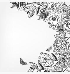 sketch flower background card rose pions vector image