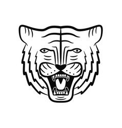 tiger face roaring head vector image