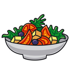 Vegetable fresh salad vector
