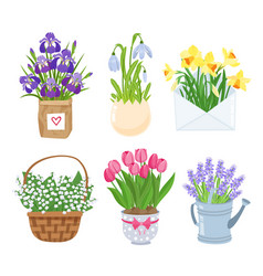 summer and spring flowers in different funny pots vector image vector image
