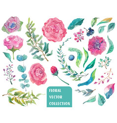watercolor beautiful floral collection vector image