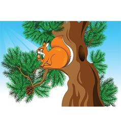 Cartoon squirrel vector image