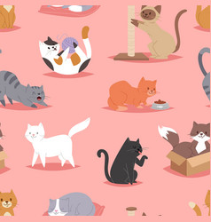 Different cats kitty play defferent pose character vector