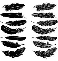 Feathers silhouette set vector