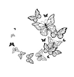 Flight contour butterflies vector