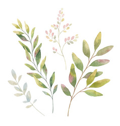 Hand drawn watercolor set green branches vector