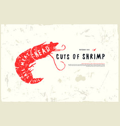 Stock shrimp cuts diagram vector