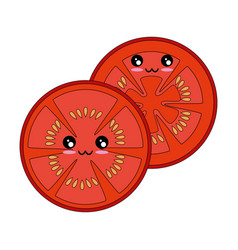Tomato slice icon vector