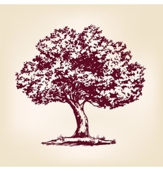 Tree hand drawn llustration realistic vector image